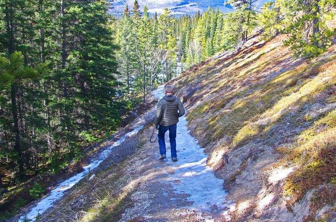 Trail to Siffleur Falls in Alberta