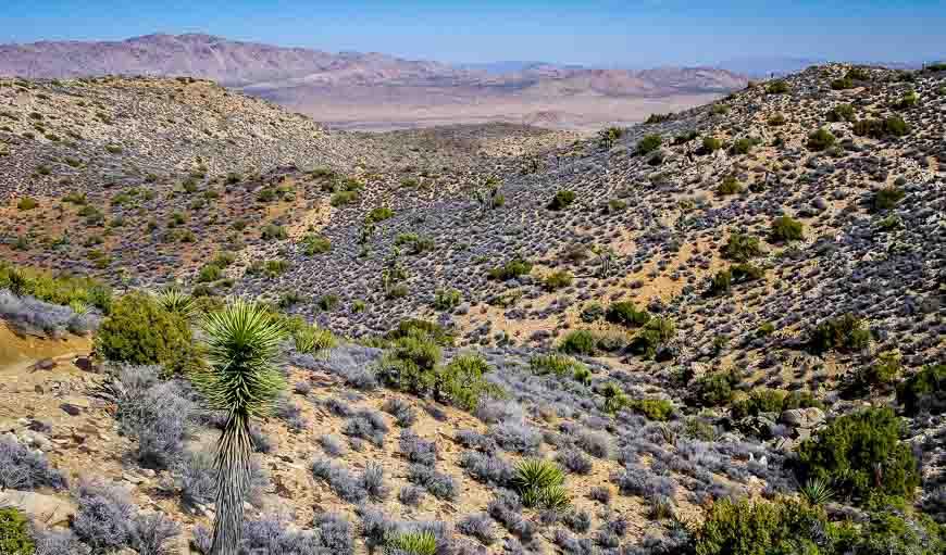 I love this arid landscape