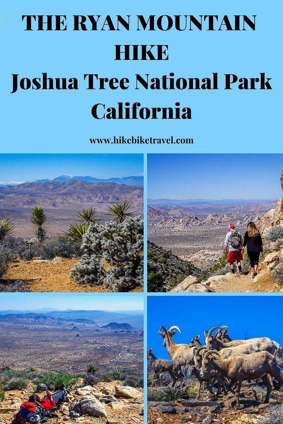 The Ryan Mountain hike, Joshua Tree National Park, California