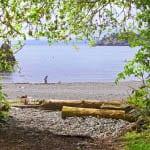 One of the pocket beaches on the Coastal Trail, East Sooke Regional Park, BC