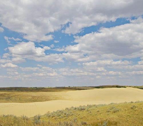 Sand hills of Saskatchewan