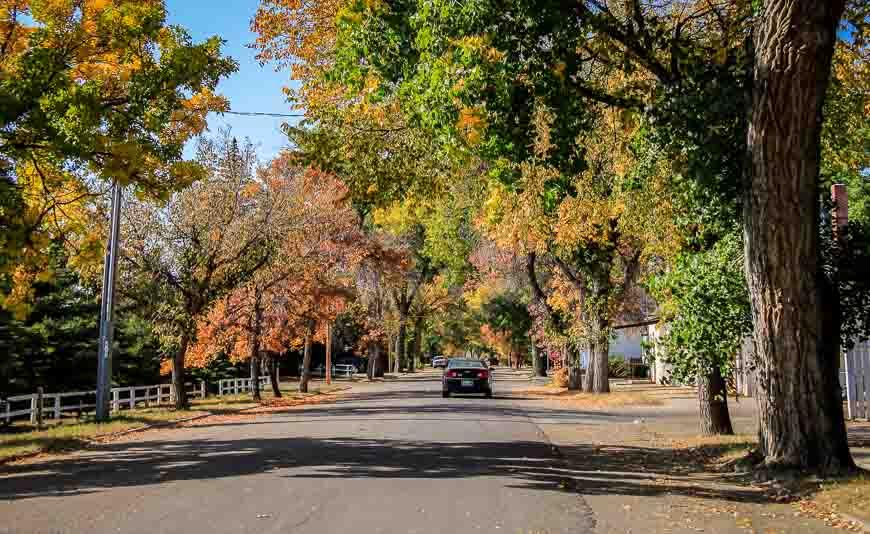 Quiet tree lined streets in Maple Creek Saskatchewan