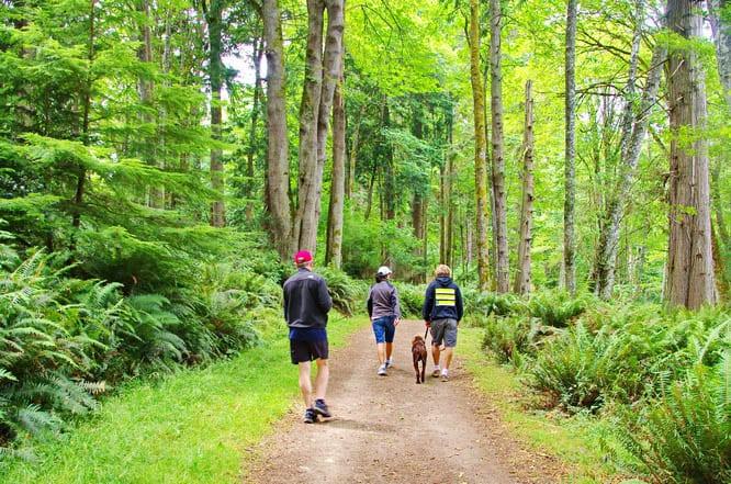 Walking the trails of Blake Island, Washington