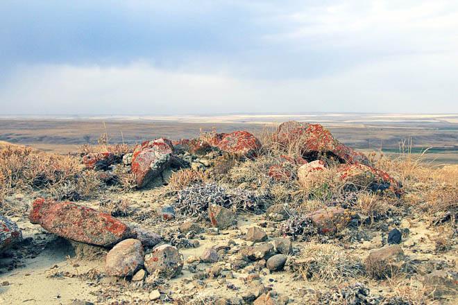 The view from 70 Mile Butte in Grasslands National Park, Saskatchewan