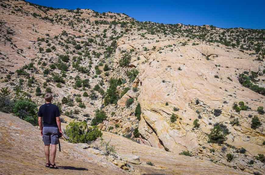 My geologist husband loving these rocks