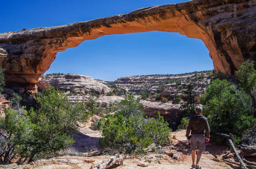 You Could Easily Spend A Day Hiking In Natural Bridges National Monument