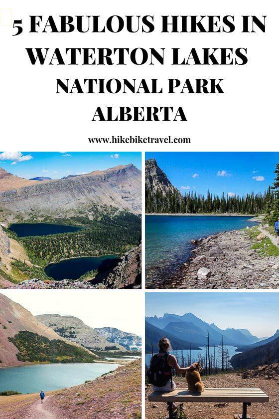 5 fabulous hikes in Waterton Lakes National Park