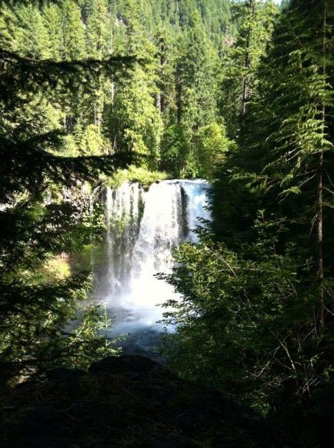 Koosah Falls on the McKenzie River, Oregon