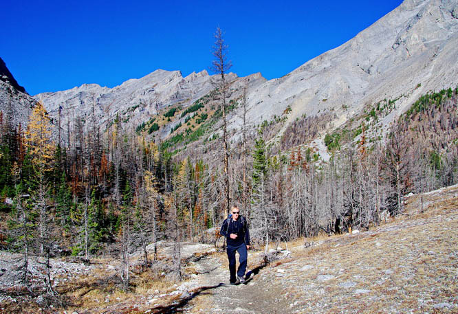 John climbing out of the trees on the way to Buller Pass, Kananaskis Country