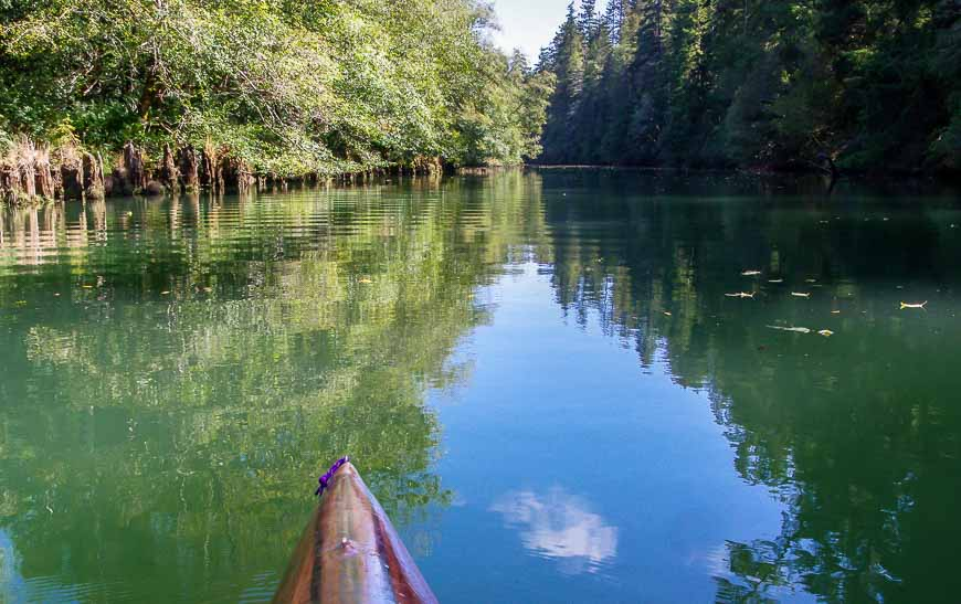 Exploring the Big River Estuary - one of the fun things to do in Mendocino