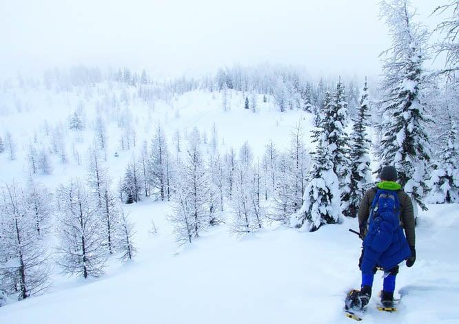 Snowshoeing near Sunshine Village Ski Resort