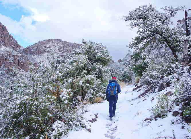 Chiricahua National Monument - Lower Rhyolite Canyon Trail