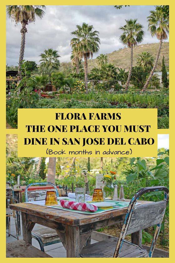 Dining at Flora Farms in San Jose del Cabo, Mexico