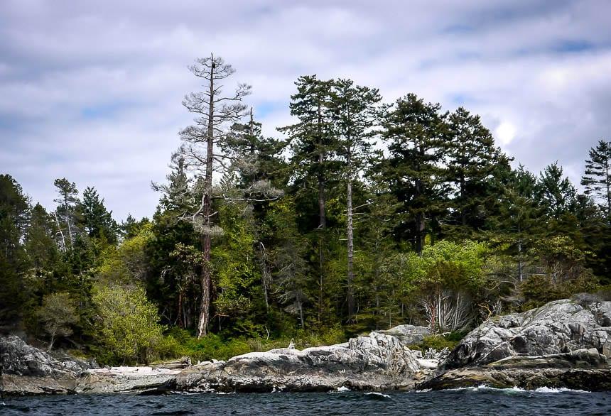 Beautiful West Coast Landscape