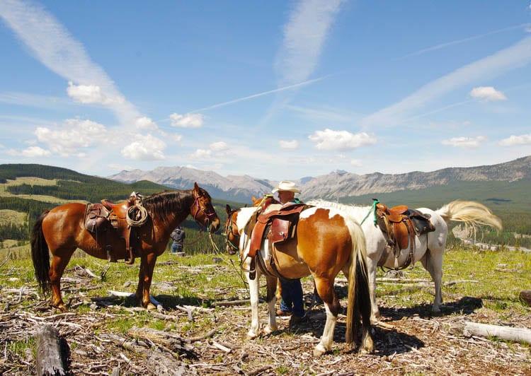 9 Reasons To Visit Sundre Alberta In Summer