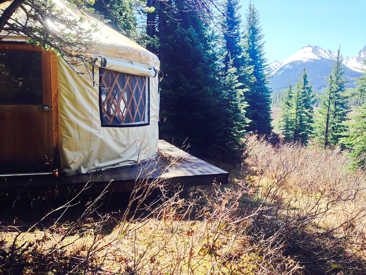 Glamping in Alberta at Mt Engadine Lodge