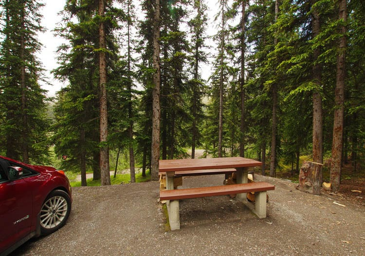 Everything You Need to Know About Camping on the Icefields Parkway