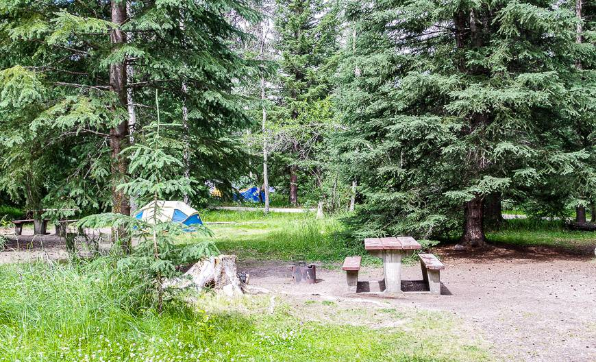 Campsites are surprisingly private considering there are 535 of them