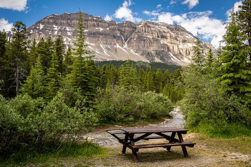 At Mosquito Creek Campground on the Icefields Parkway