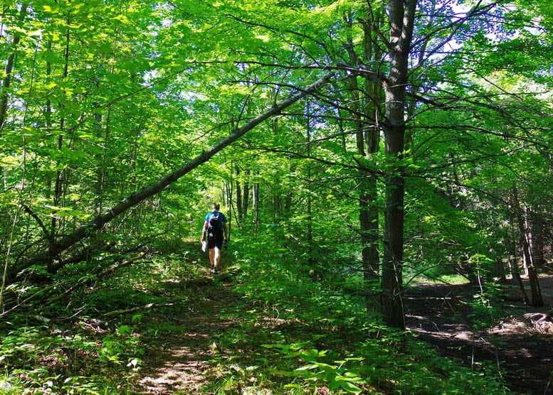 A Hike on the Northumberland Section of the Ganaraska Trail