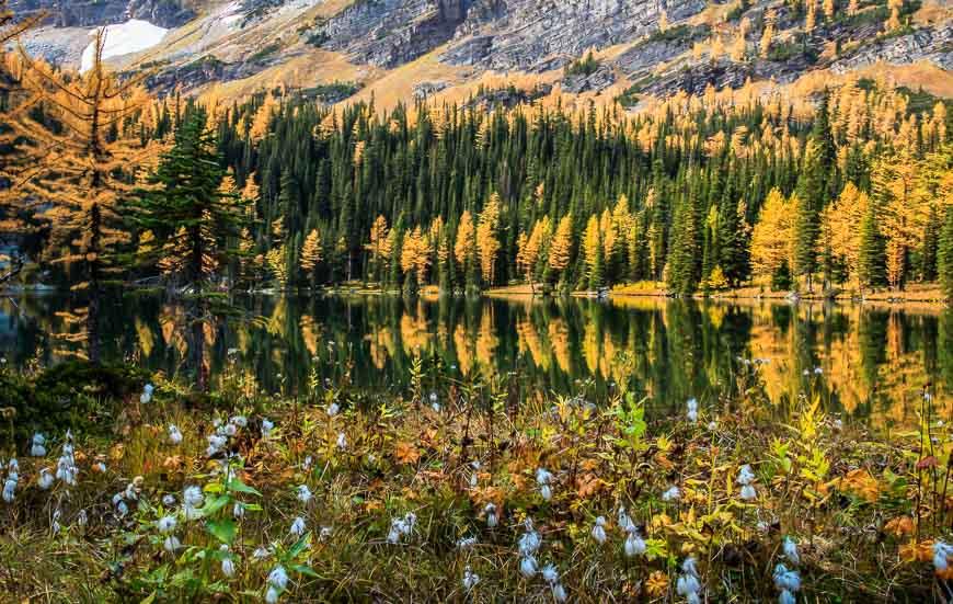Incredible O'Brien Lake