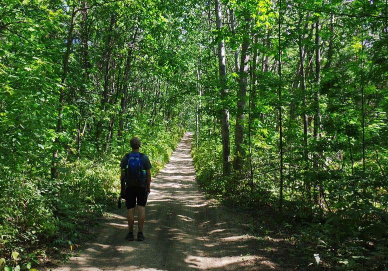 An Easy Hike on the Oak Ridges Moraine Trail