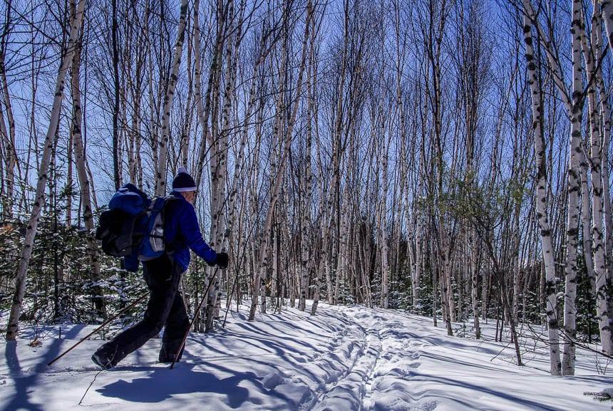 Skiing in the Laurentians