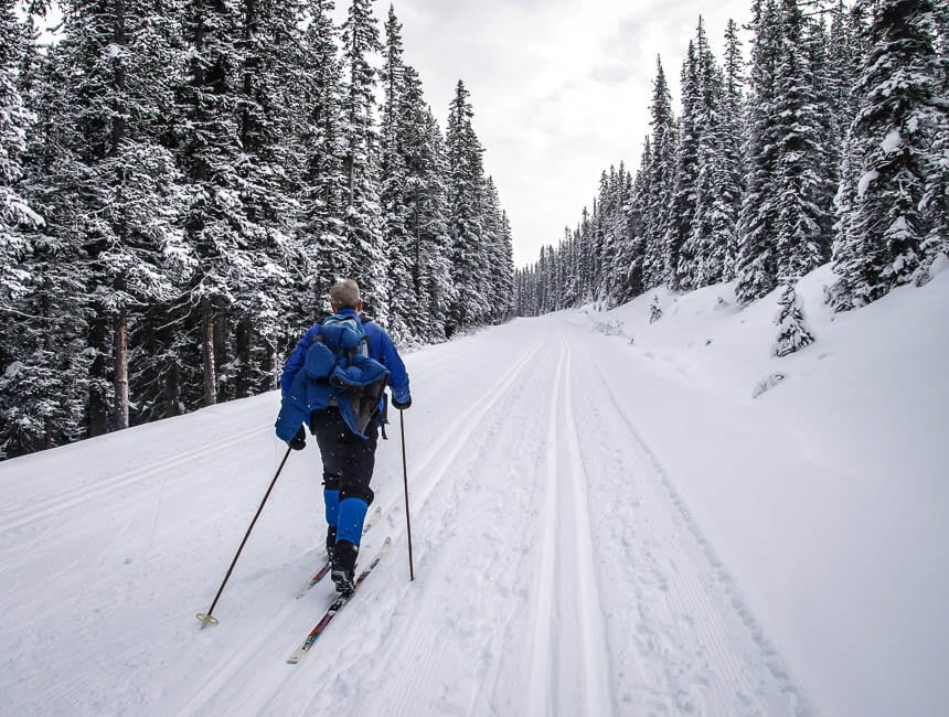Where To Go Cross Country Skiing In Alberta