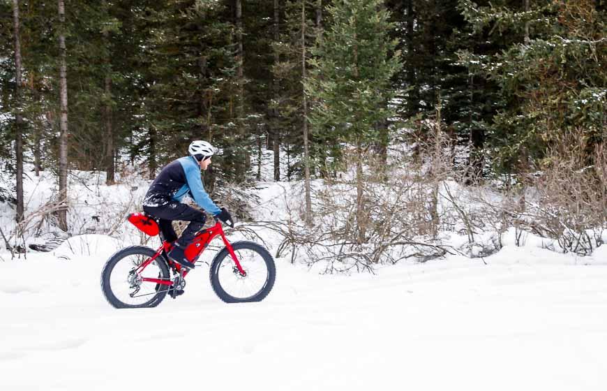 Fat tire biking in Banff National Park