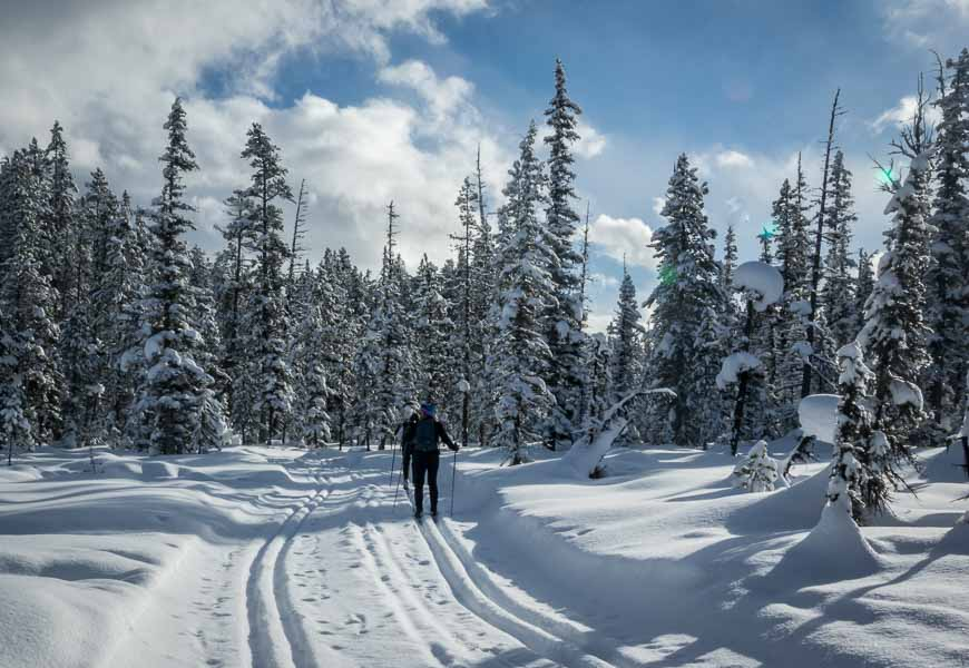 Cross-country skiing the Fairview Trail near Lake Louise