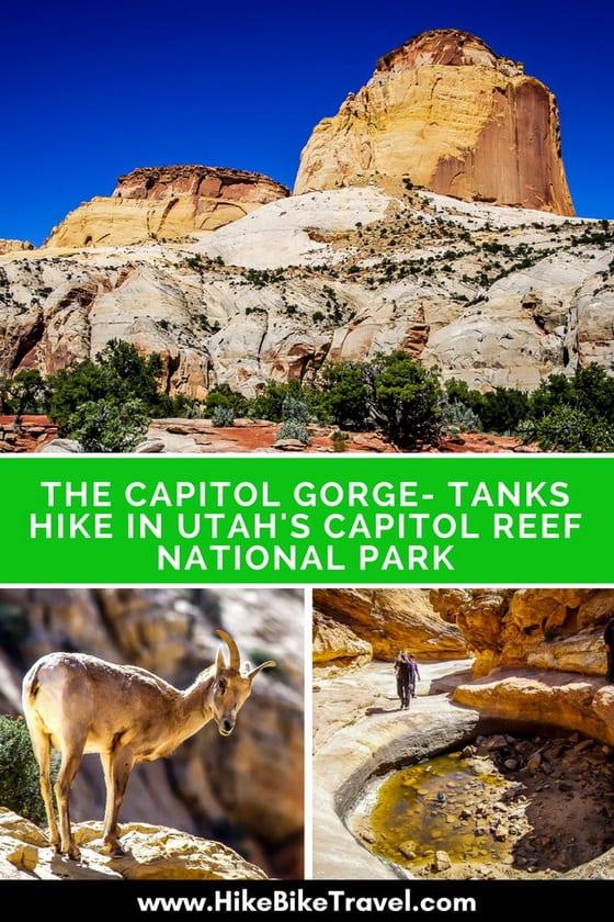 The Capitol Gorge - Tanks Hike in Utah's Capitol Reef National Park