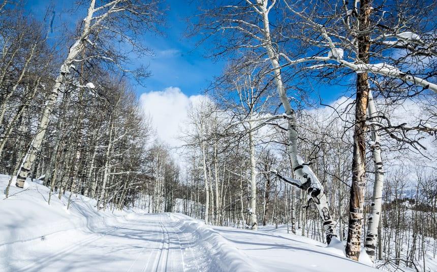 Amazing cross-country skiing