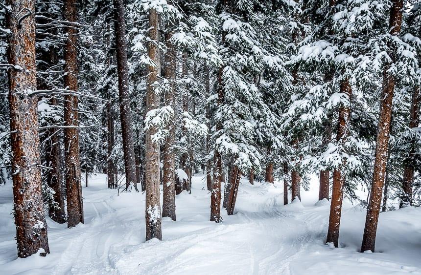 Destination: Winter Park Resort in Colorado