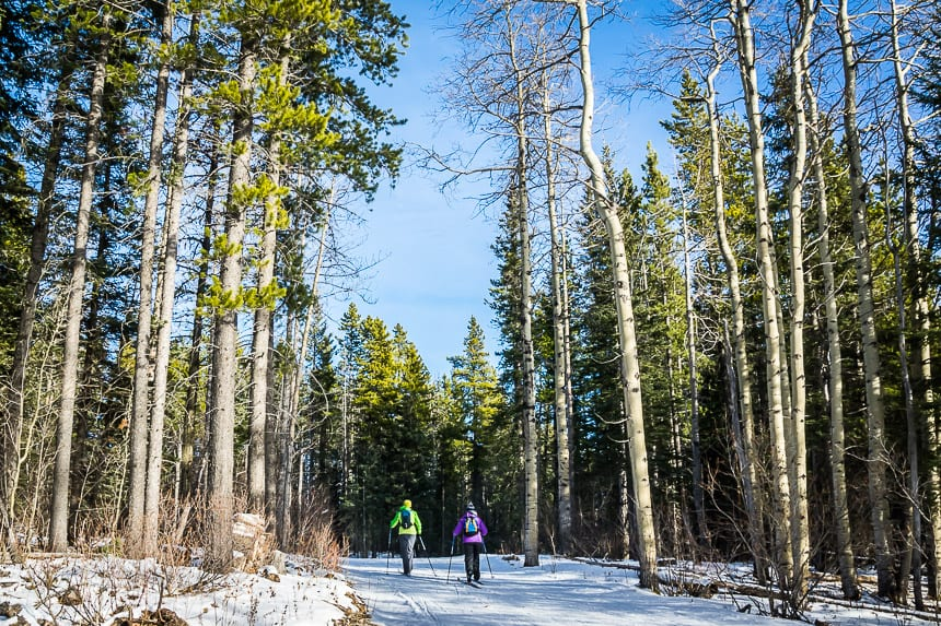 A Weekend of Winter Magic in Hinton, Alberta