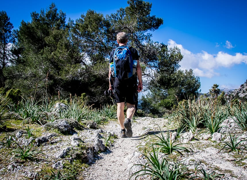 Hiking in Mallorca from Soller to Alaro