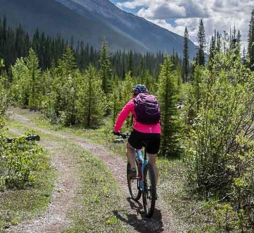 High Rockies Trail biking