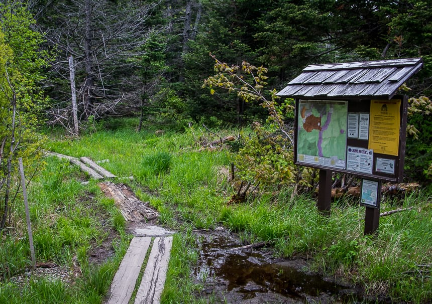 3 Pinkham Notch Hikes You'll Want to Do