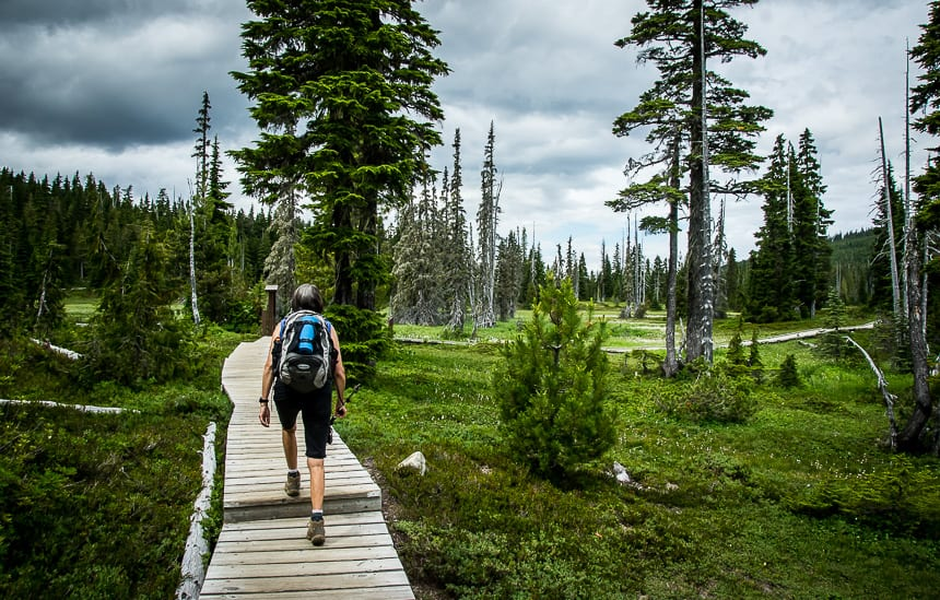 The Kwai Lake Loop Hike in Strathcona Provincial Park