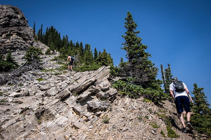 The Nihahi Ridge Hike in Kananaskis Country