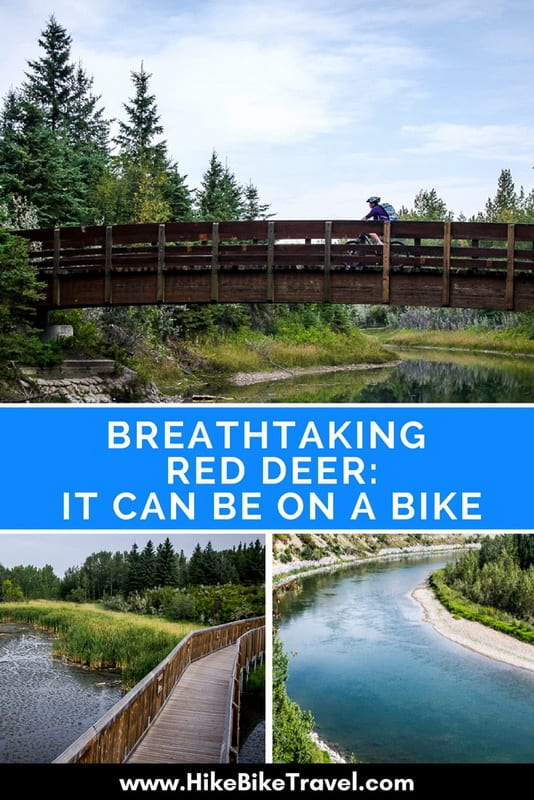 Breathtaking Red Deer: It Can Be on a Bike