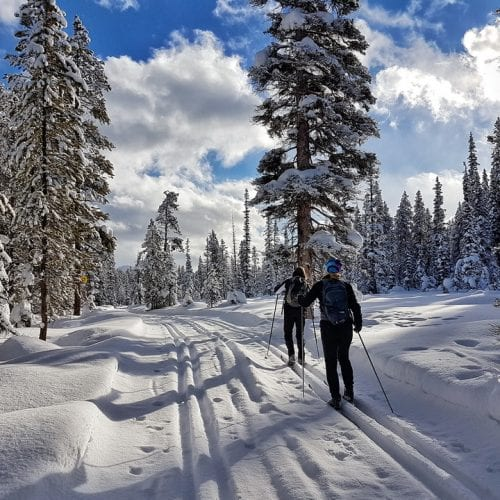 10 of the Best Winter Activities in Alberta
