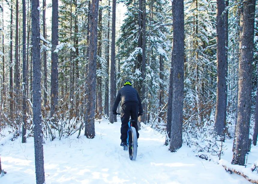 Fat tire biking on the West Bragg Creek trails