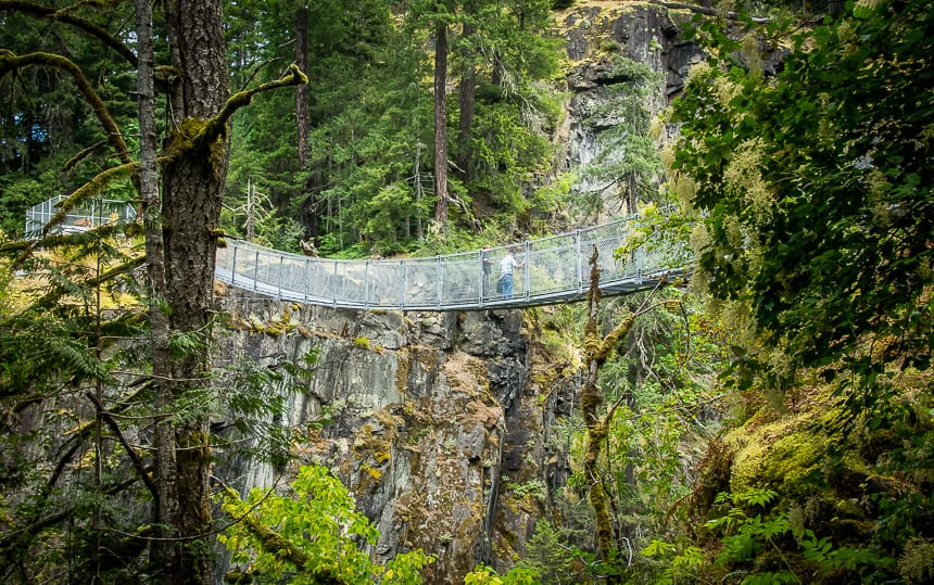 The Elk Falls Suspension Bridge