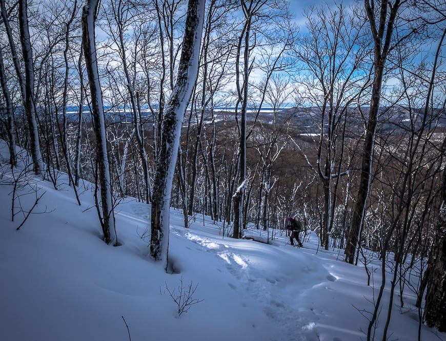 Stokely Creek Lodge: A Winter Mecca for Cross-country Skiing