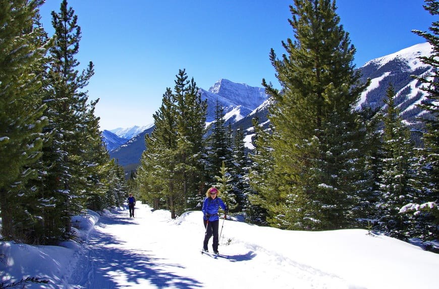 5 Places To Go Cross Country Skiing Near Calgary
