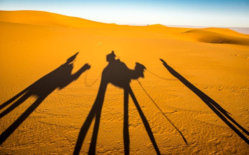Morning shadows in the desert