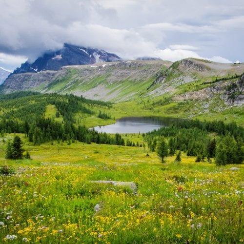 125 Nature Hot Spots in Alberta