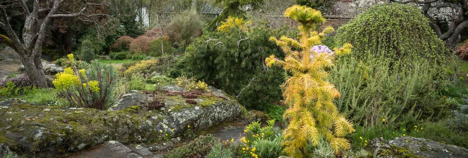 Victoria gardens in spring