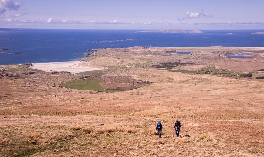 Climbing Mweelrea via tussocky terrain