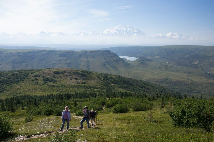 Views of Denali on a hike